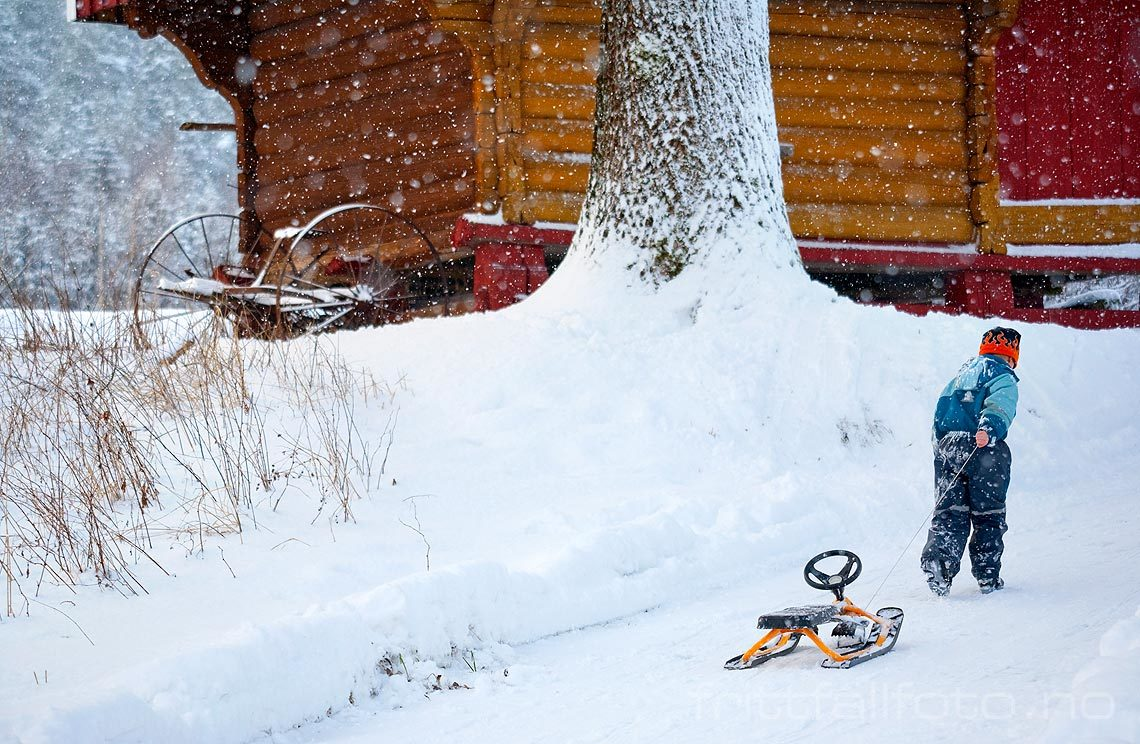 Vinterstemning i Øvre Bø, Midt-Telemark, Vestfold og Telemark.<br>Bildenr 20080106-147.