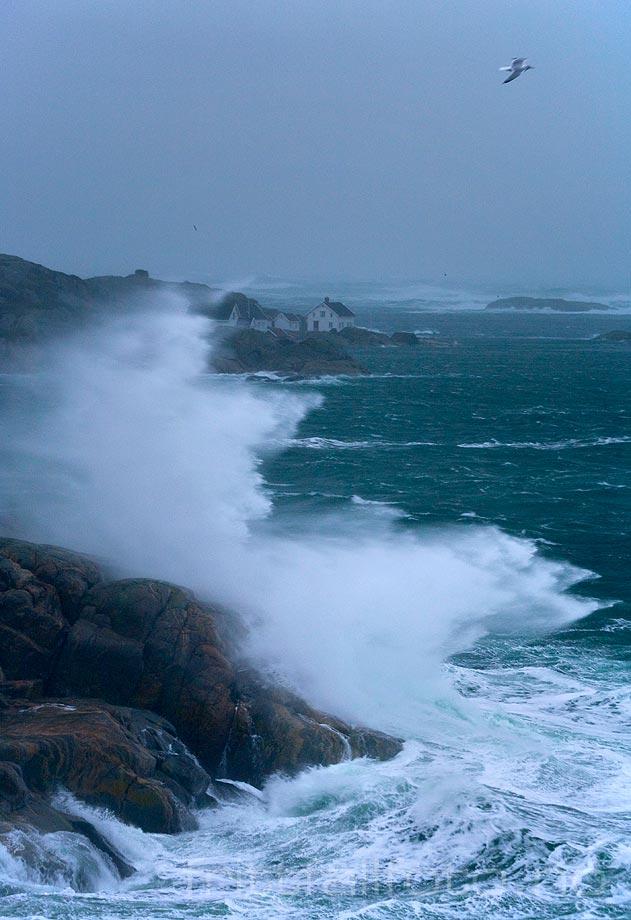 Stormen ''Tuva'' dundrer inn mot svabergene i Høvåg, Lillesand, Agder.<br>Bildenr 20080131-029.