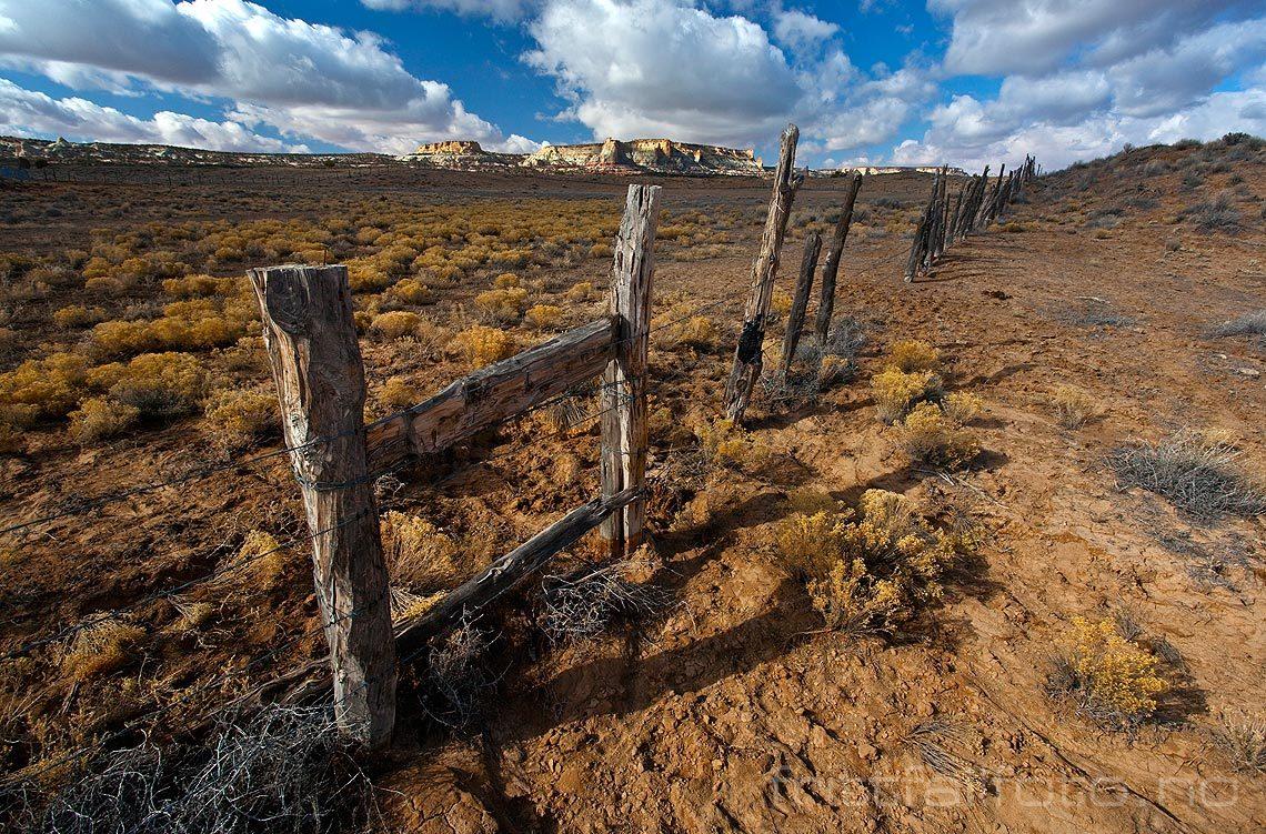 Ørkenlandskap nær Kaibito, Arizona, USA.<br>Bildenr 20080317-188.