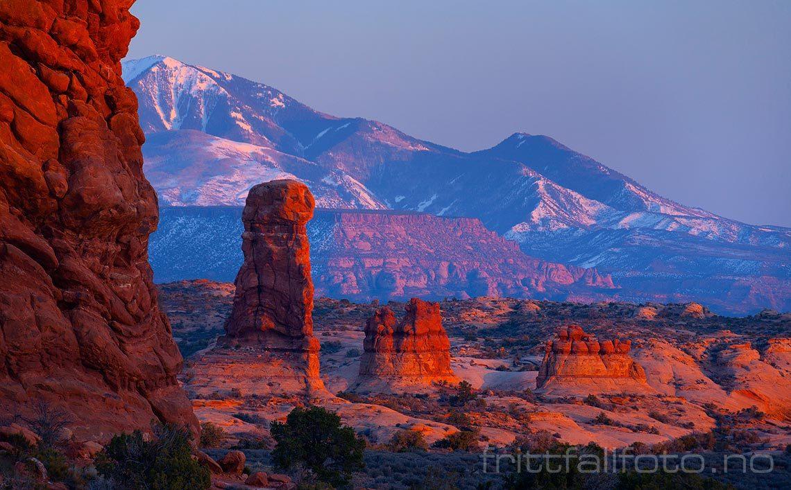 Fjellformasjonene varmes av kveldssola nær Salt Valley i Arches National Park, Utah, USA.<br>Bildenr 20080319-630.