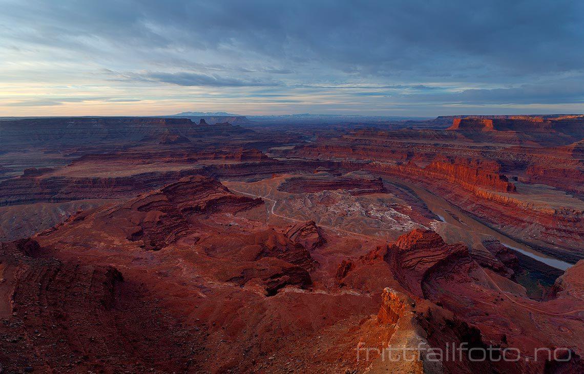 Morgen ved Dead Horse Point nær Moab, Utah, USA.<br>Bildenr 20080320-022.
