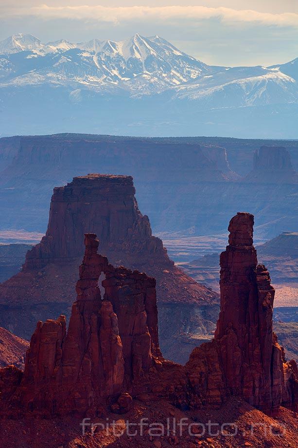 Washerwoman Arch i Buck Canyon, Canyonlands National Park, Utah, USA.<br>Bildenr 20080320-180.