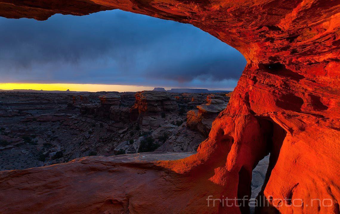 Kveldsstemning ved Little Spring Canyon i Canyonlands National Park, Utah, USA.