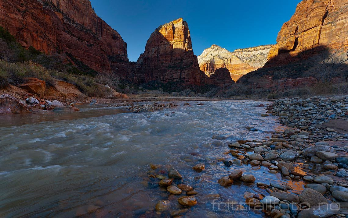 Ved North Fork Virgin River i Zion Canyon, Utah, USA.