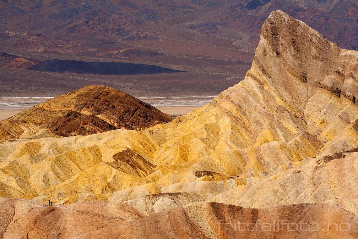 Ved Zabriskie Point i Death Valley National Park, California, USA.<br>Bildenr 20080323-040.