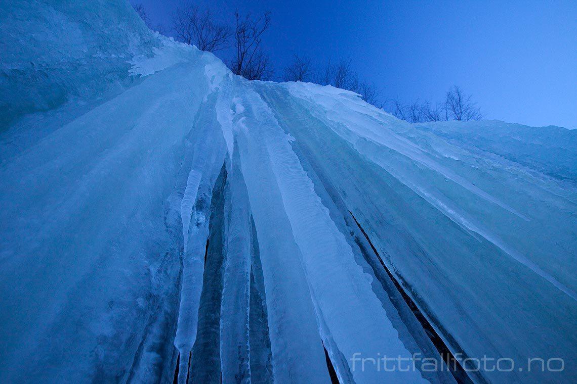 Store istapper henger i fjellveggen nær Telnes ved Seljordsvatnet, Seljord, Telemark.