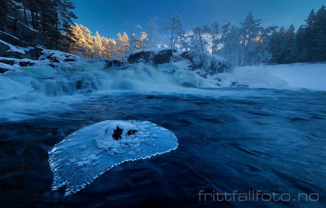Råkald vintermorgen ved Herrefossen i Bøelva, Bø, Telemark.