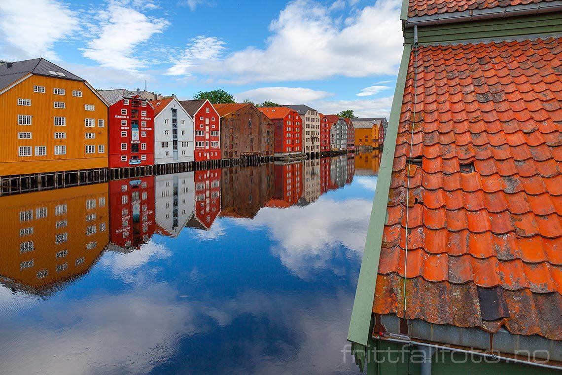 Ved Nidelva i Trondheim.
