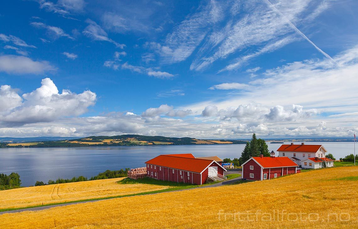 Blank og fin høstdag ved Gåserud nær Kapp, Østre Toten, Innlandet.<br>Bildenr 20130809-048.