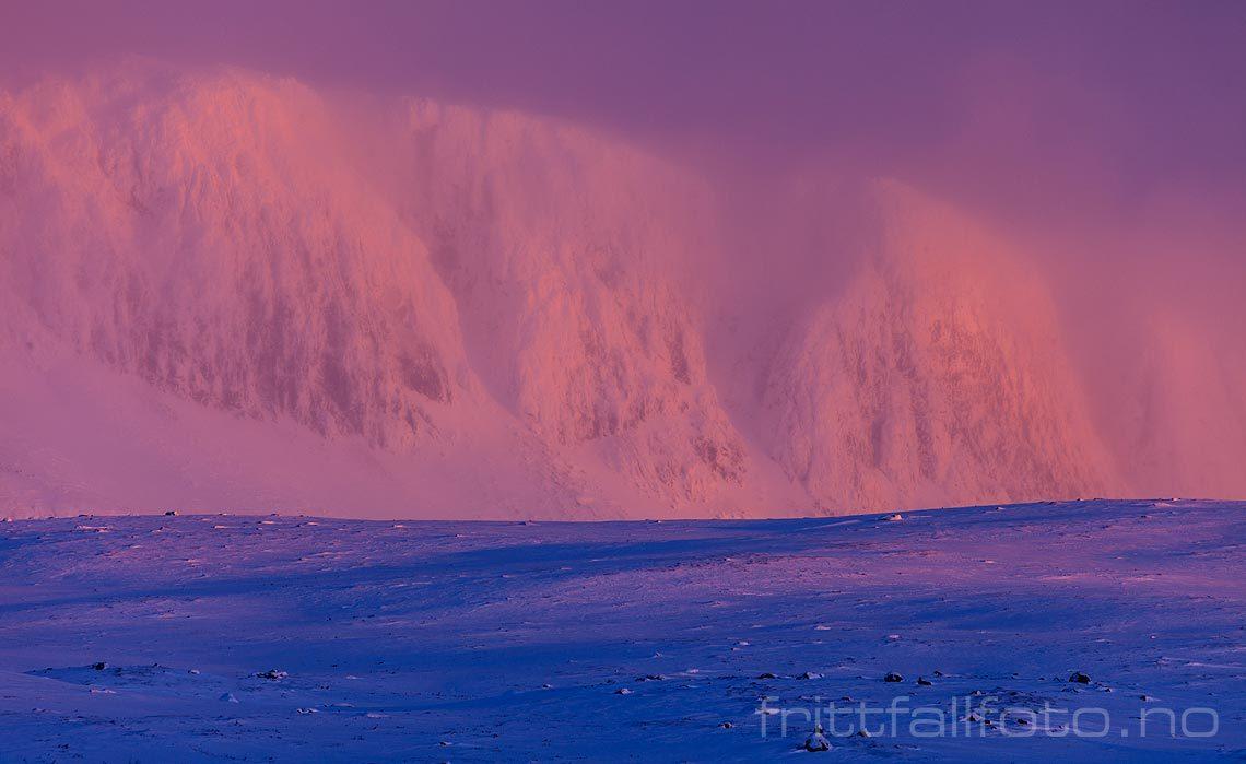 Kuling sørger for å pakke Hallingskarvet i snøfokk mens morgensola farger vinterfjellet ved Ustaoset, Hol, Buskerud.