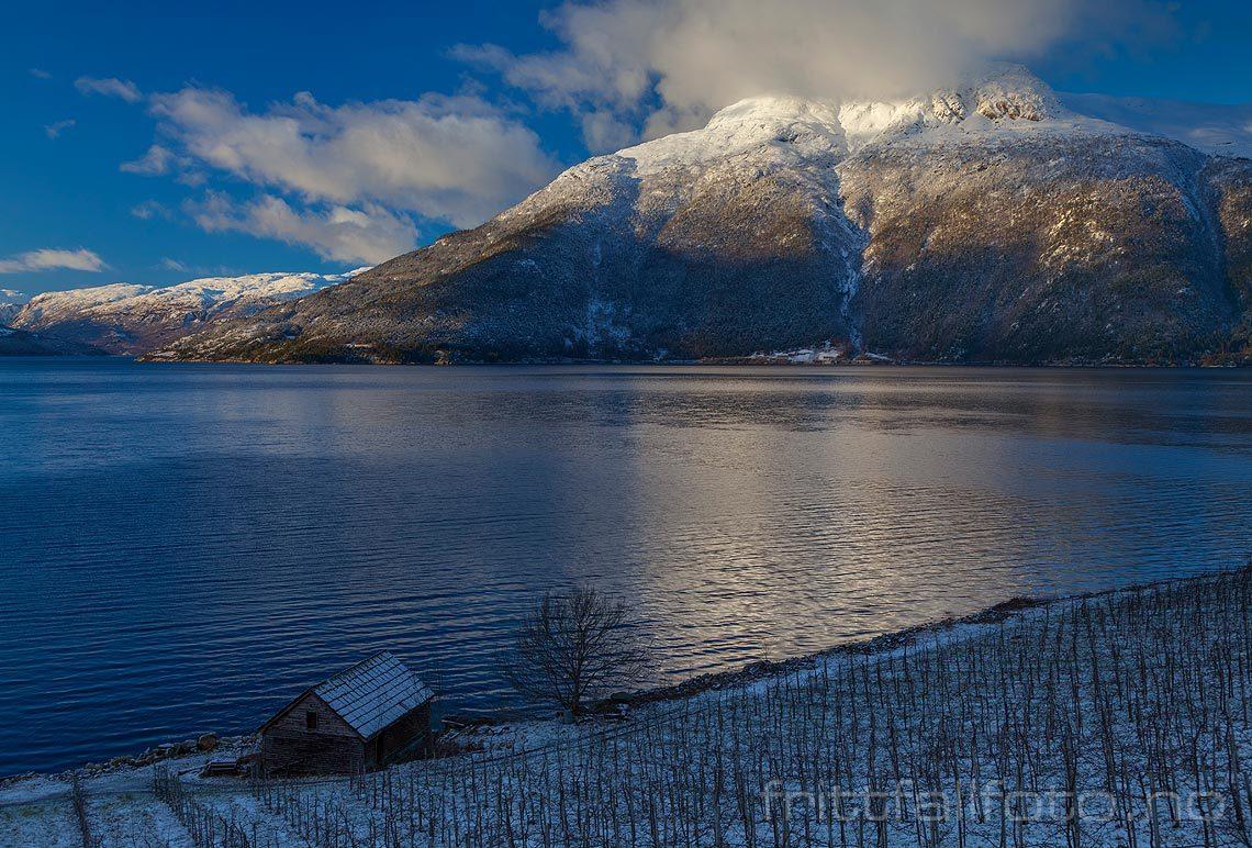 Vinterstemning nær Ulsnes ved Eidfjorden, Ullensvang, Vestland.<br>Bildenr 20140112-838.