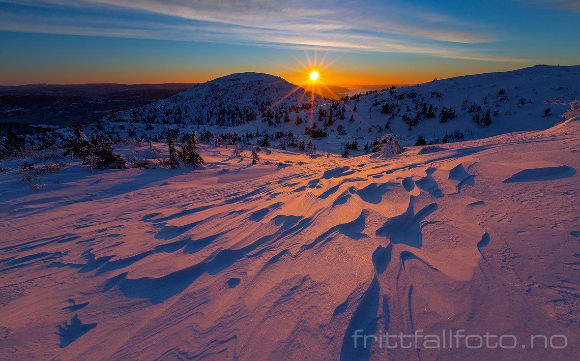 Vintermorgen nær Vierburoe på Lifjell, Telemark.