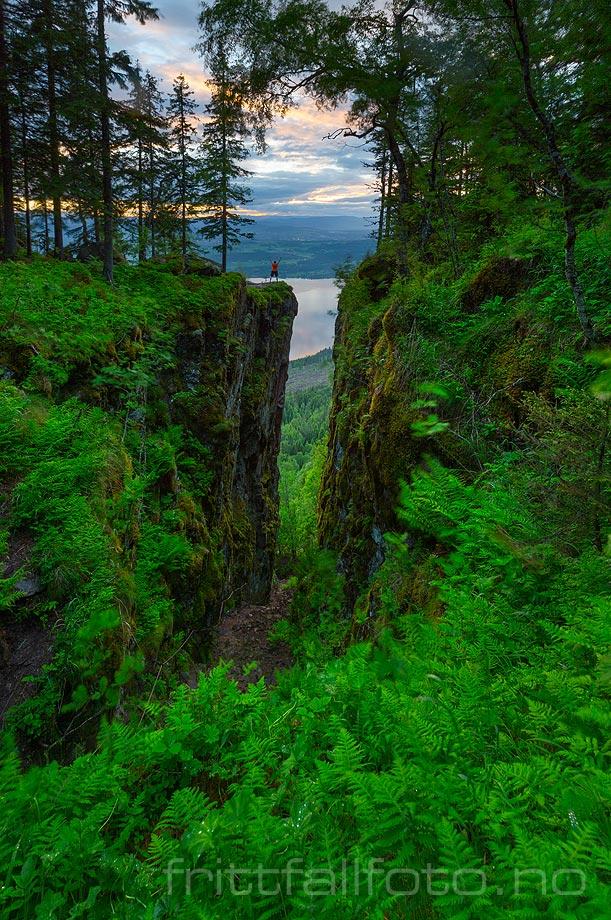 Den mørke og mystiske Mørkgonga på Krokskogen har nok inspirert en eventyrforteller eller to opp gjennom tidene. Du finner den høyt over Steinsfjorden på Ringerike, Viken.<br>Bildenr 20170616-200.