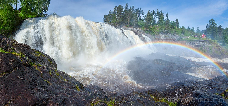 I midten av juni var det stor vannføring i Haugfossen ved Blaafarveværket, Modum, Buskerud.