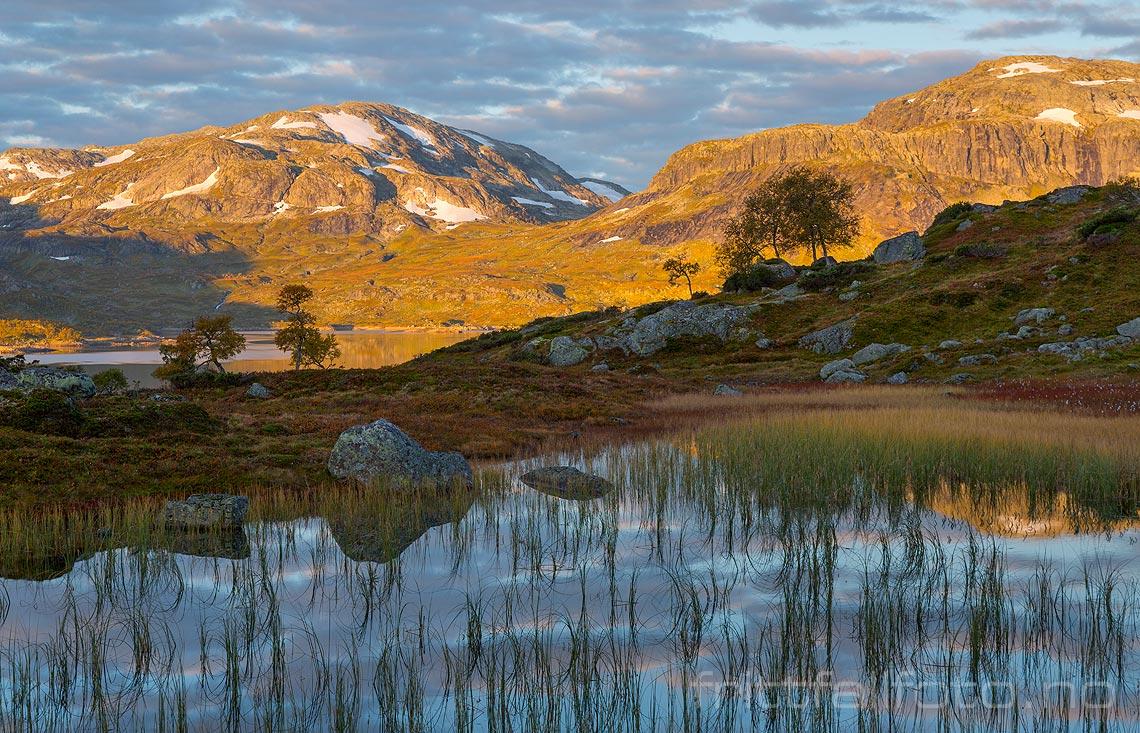 En stille høstmorgen nær Steinvollen på Haukelifjell, Vinje, Vestfold og Telemark.<br>Bildenr 20170917-114.