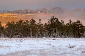 Tveitanåsen, Midt-Telemark.