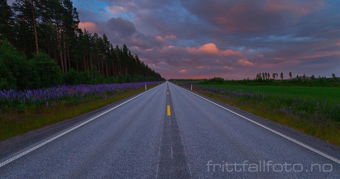 På rv 2 og Norges lengste rettstreking. Den går 7,1 km over Haslemoen, Våler, Innlandet.<br>Bildenr 20120702-285.