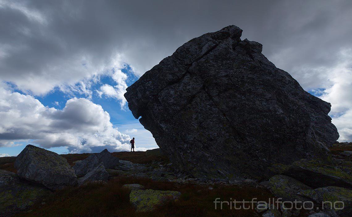 Ved 'trollet' nær Troganatten på Lifjell, Seljord, Telemark.