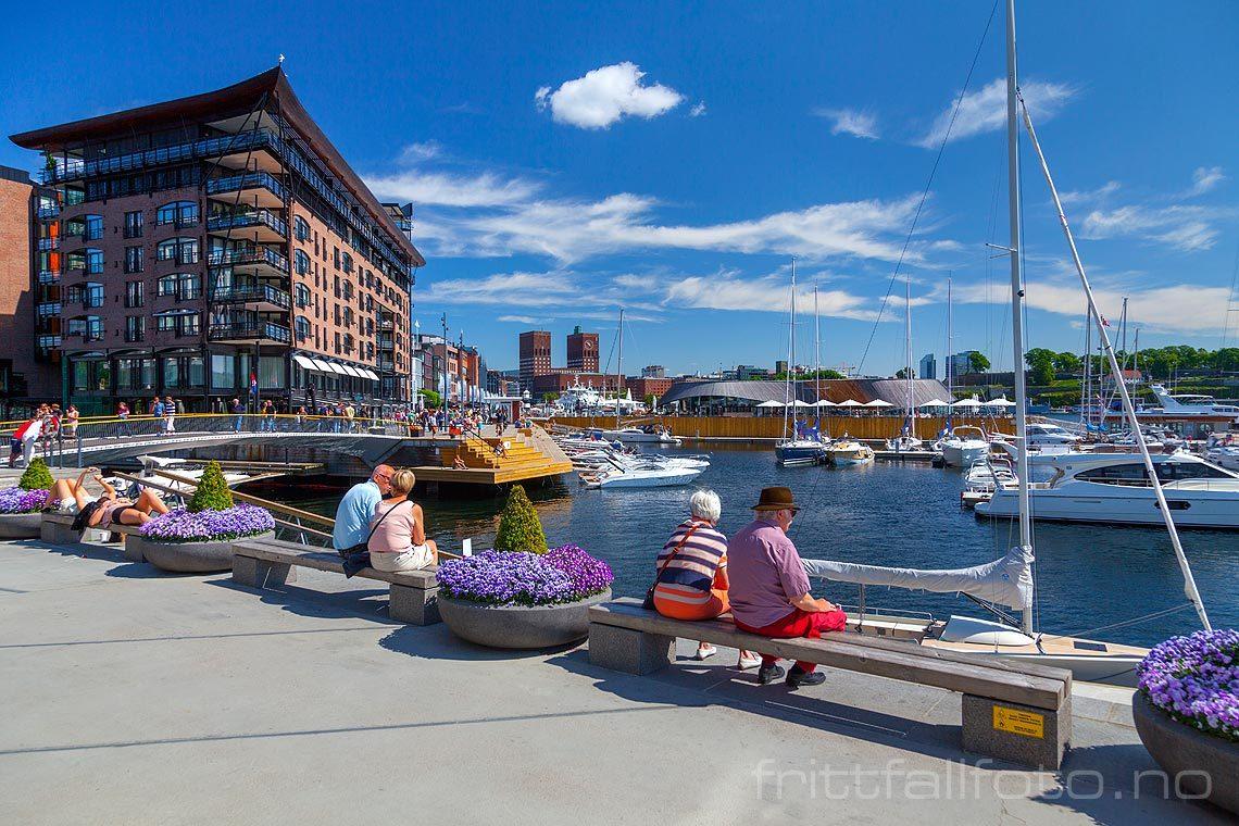 På Tjuvholmen, Oslo. Aker Brygge og Oslo rådhus i bakgrunnen.<br>Bildenr 20140531-090.