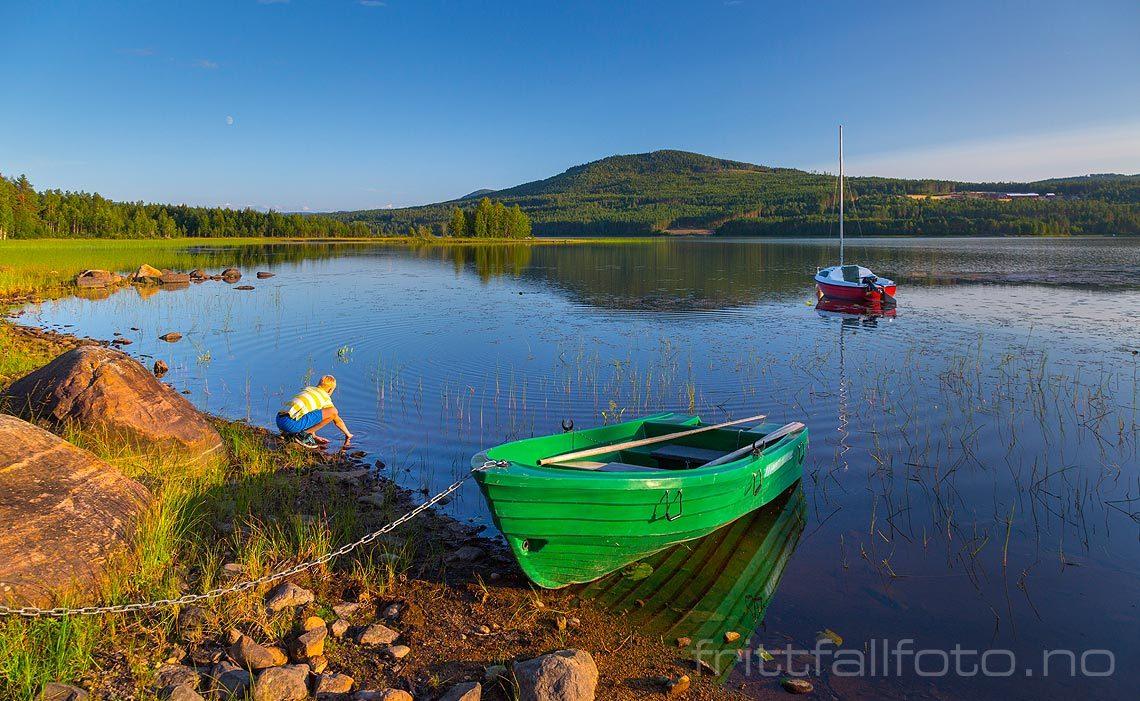 Sommerkveld ved Vermundsjøen på Finnskogen, Åsnes, Innlandet.<br>Bildenr 20140806-107.
