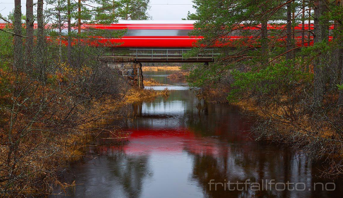 Et tog på Sørlandsbanen passerer Sundtjørn ved Gauslåfjorden, Birkenes kommune, Aust-Agder.