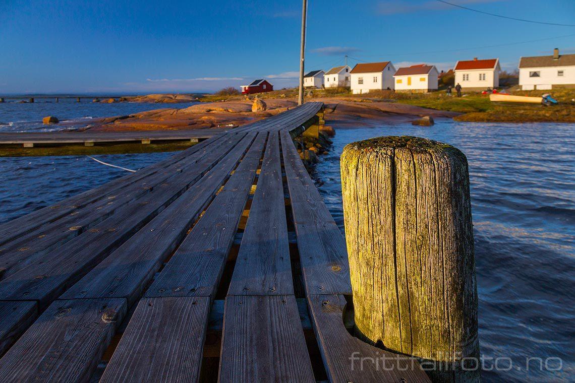 Ved Saltholmen nær Saltnes, Råde, Viken.<br>Bildenr 20141212-242.