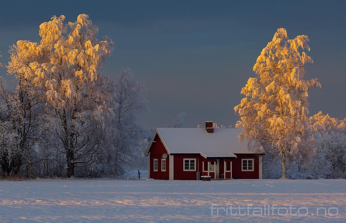 Midtvinterlys ved Storhov i Heradsbygd, Elverum kommune, Hedmark.