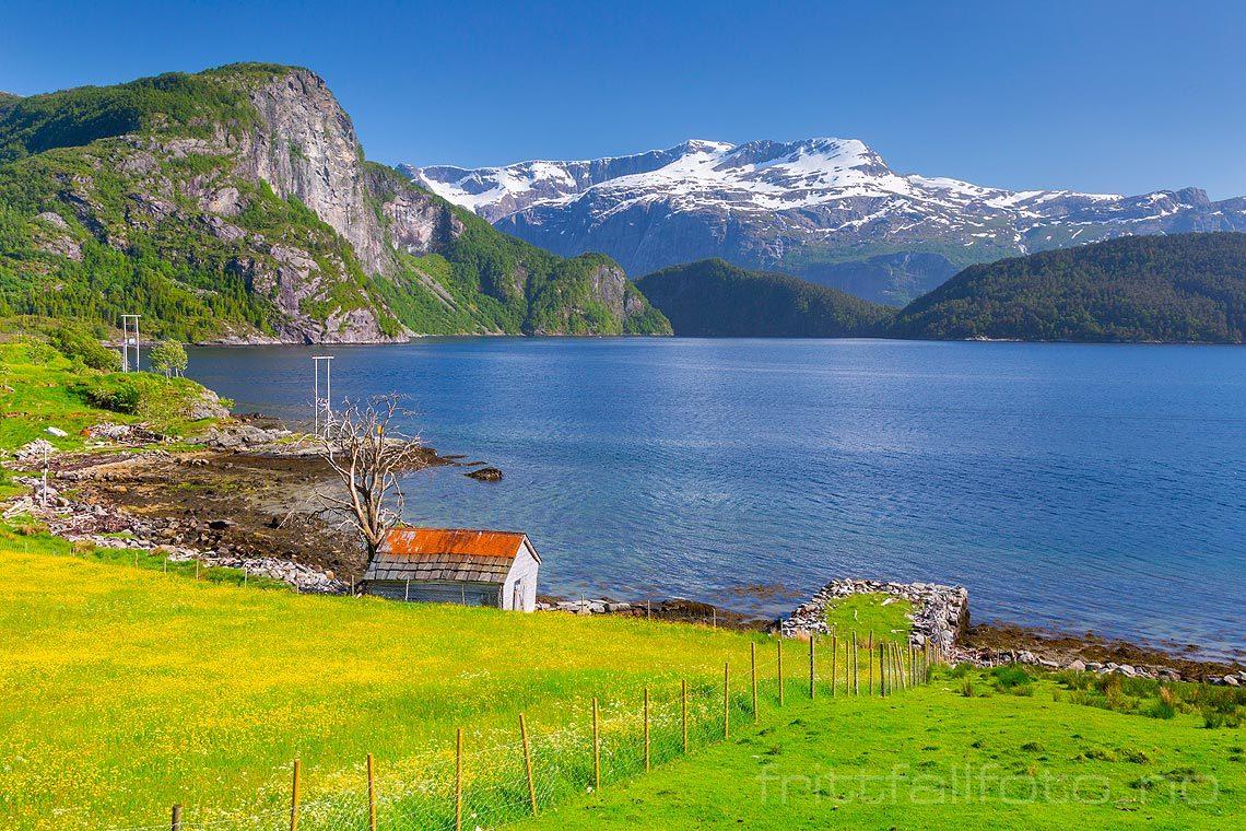 Nær Gryta ved Førdefjorden, Naustdal kommune, Sogn og Fjordane.