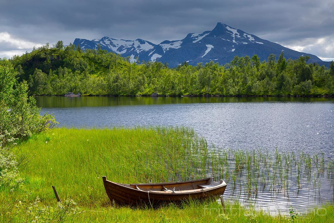 Ved Tennvatnet på Korgfjellet, Vefsn, Nordland.<br>Bildenr 20160806-758.