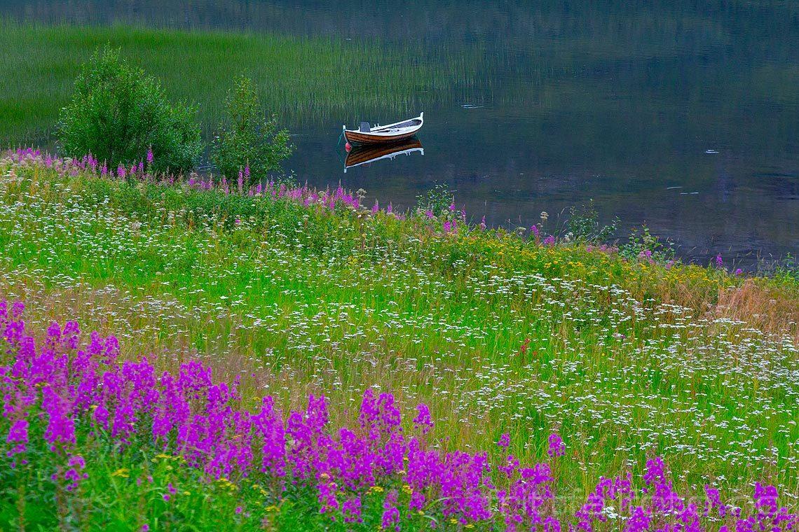 Stille sommerkveld ved Røyrbakkvatnet, Salangen, Troms og Finnmark.<br>Bildenr 20160808-337.