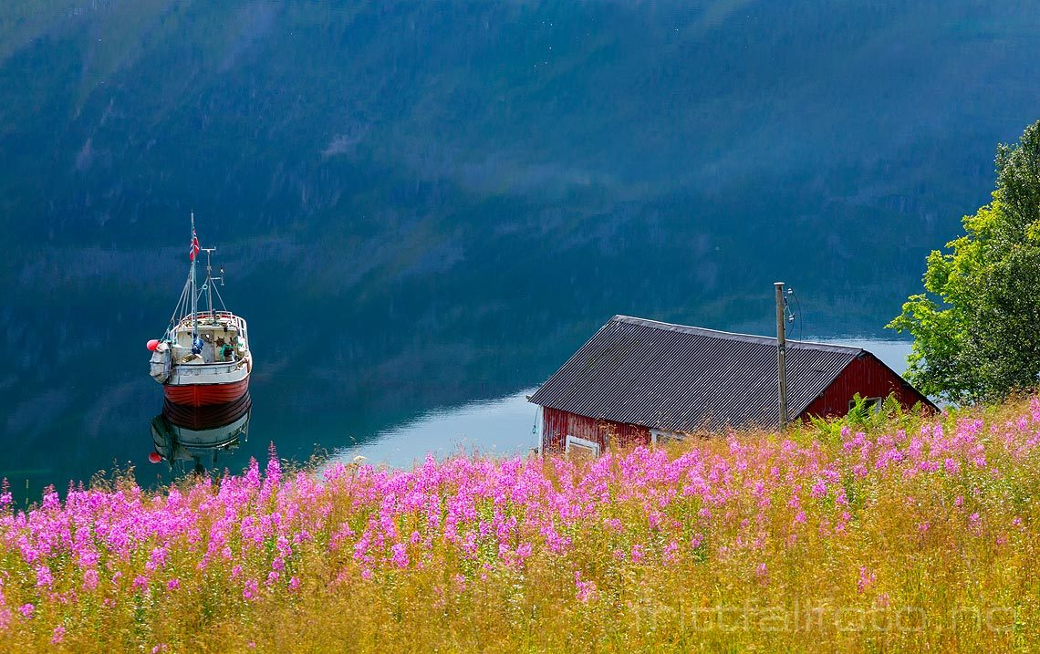 Idyll ved Gullesfjorden på Hinnøya, Kvæfjord, Troms og Finnmark.<br>Bildenr 20160811-080.