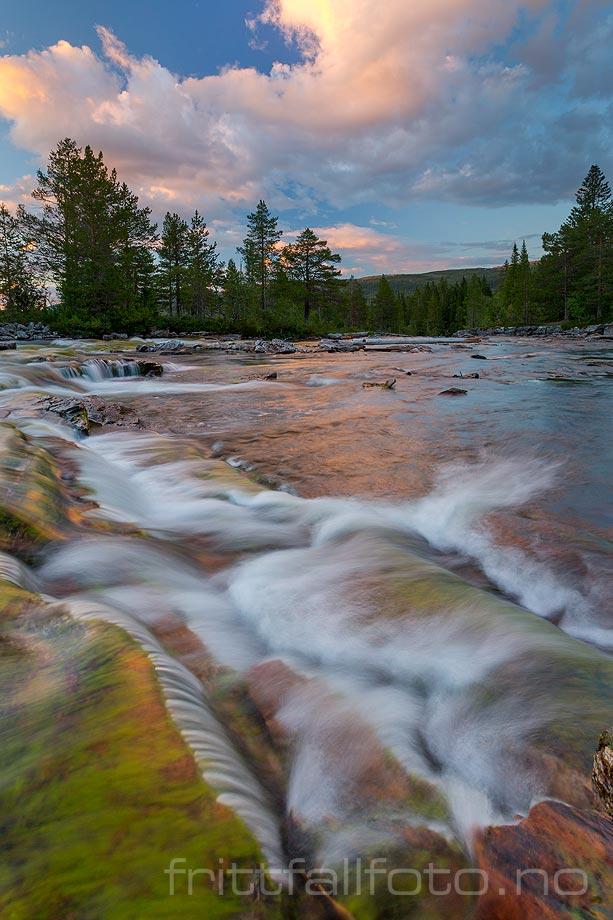Kveldsstemning ved Sefrivasselva i Svenningdalen, Grane, Nordland.<br>Bildenr 20170805-524.