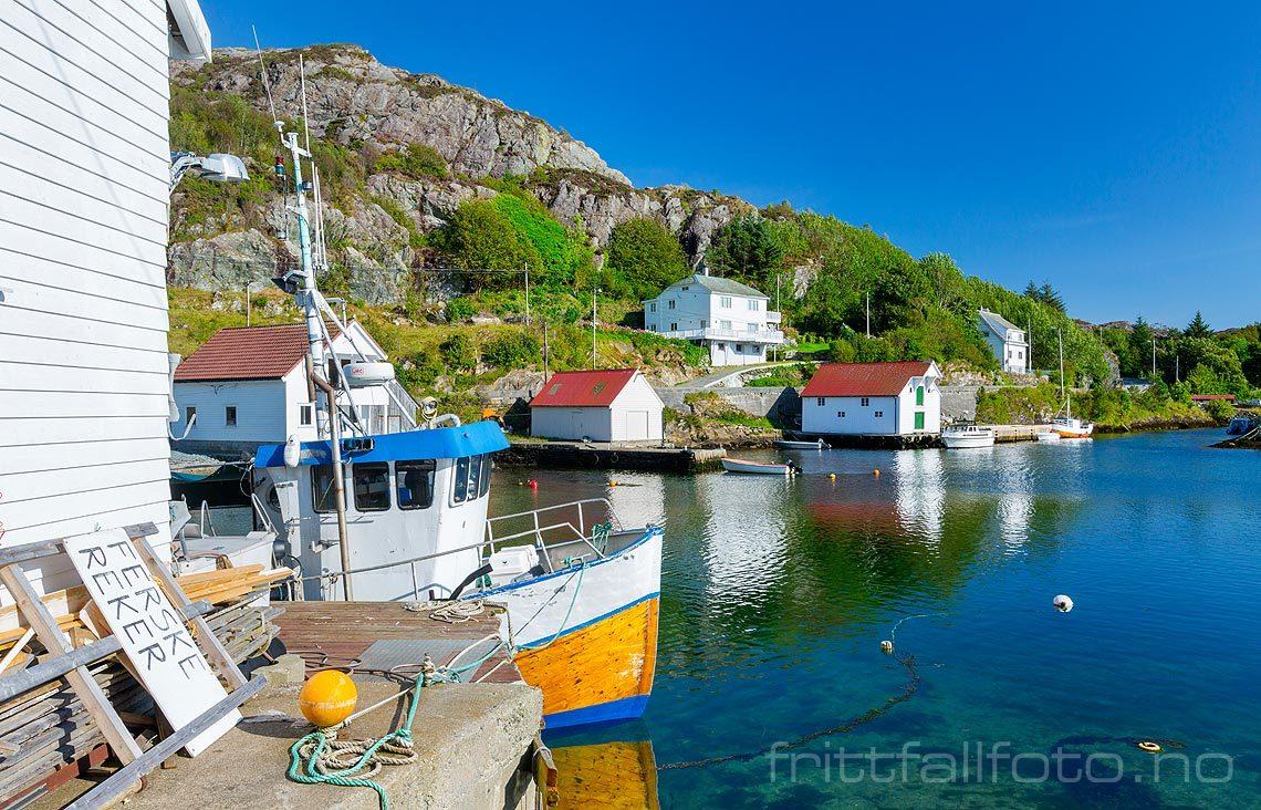 Nær Vestre Vika ved Vikafjorden på Bømlo, Bømlo, Vestland.<br>Bildenr 20170822-601.
