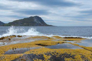 Sandsfjorden ved Gurskøya, Sande.