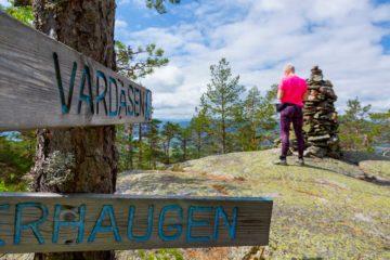 Vardåsen, Midt-Telemark.