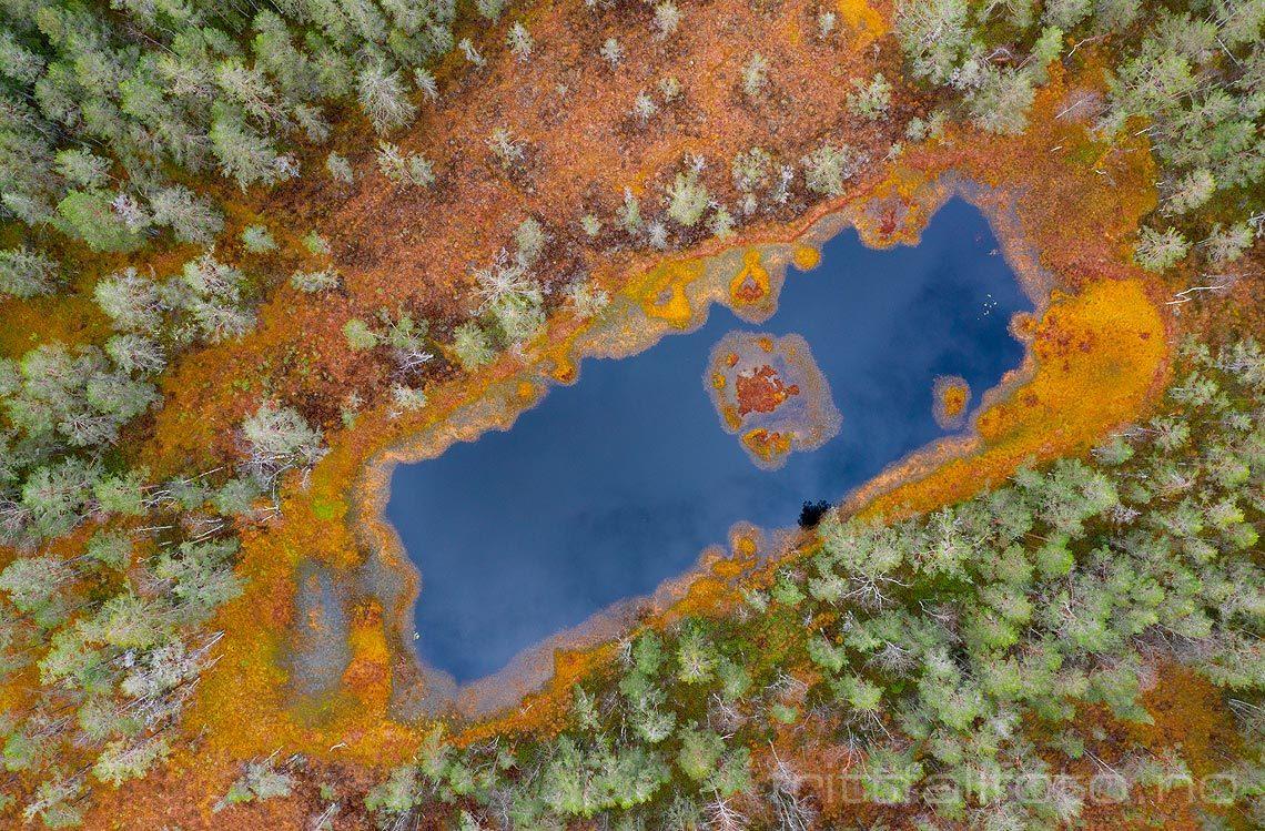 Dette snodig formede tjernet ligger i skogen nær Vatnar, Midt-Telemark, Vestfold og Telemark.<br>Bildenr 20191022-005.