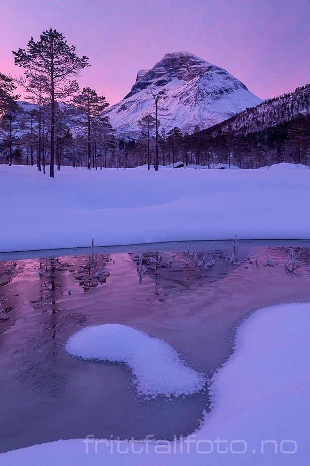 Vintermorgen i i Viromdalen, Sunndal, Møre og Romsdal.<br>Bildenr 20190312-011.