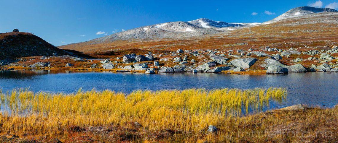 Høststemning på Saltfjellet, Rana, Nordland.<br>Bildenr 20190927-385-386.