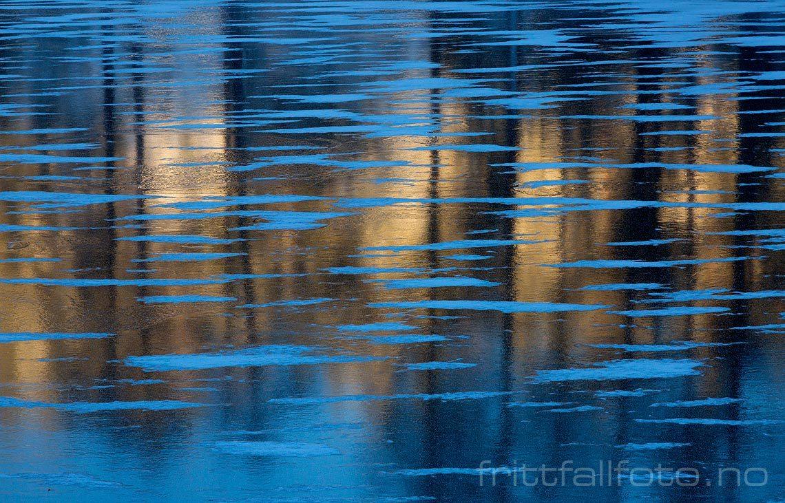 Isen reflekterer det lave vinterlyset på Bjortjønn nær Hynnekleiv, Froland, Agder.<br>Bildenr 20161111-050.