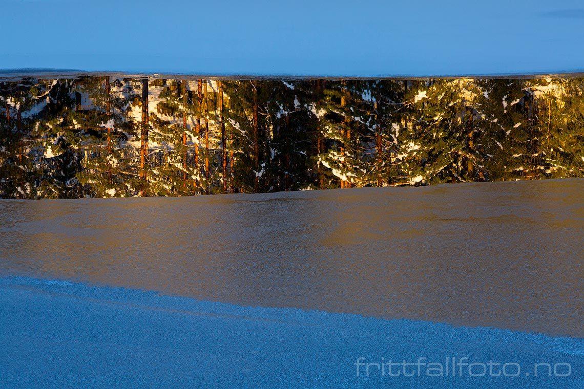 Isen er i ferd med å legge seg på Mjåvatna, Froland, Agder.<br>Bildenr 20161111-300.