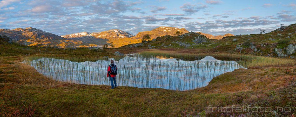 Høstmorgen på Haukelifjell, Vinje, Vestfold og Telemark.<br>Bildenr 20170917-105-107.