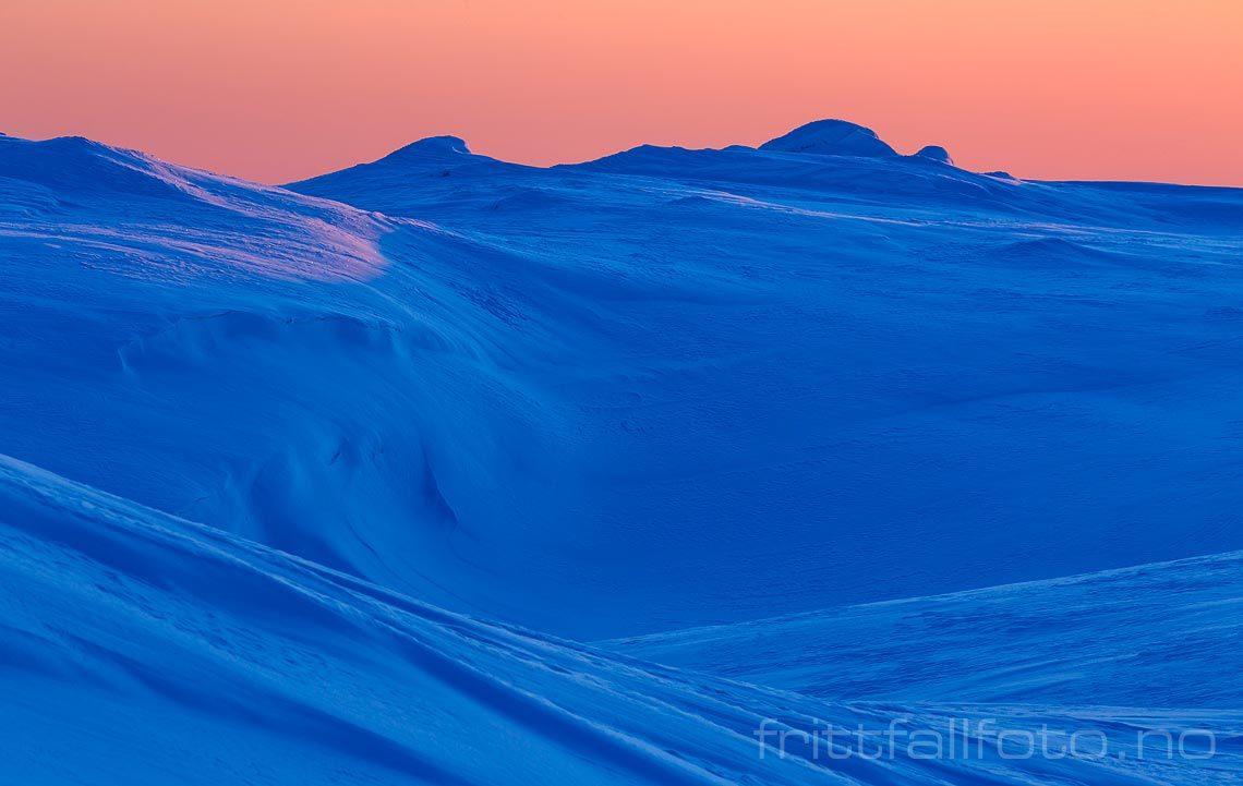 Vinterlandskap ved Skåråfjellholmen på Lifjell, Midt-Telemark, Vestfold og Telemark.<br>Bildenr 20180310-074.
