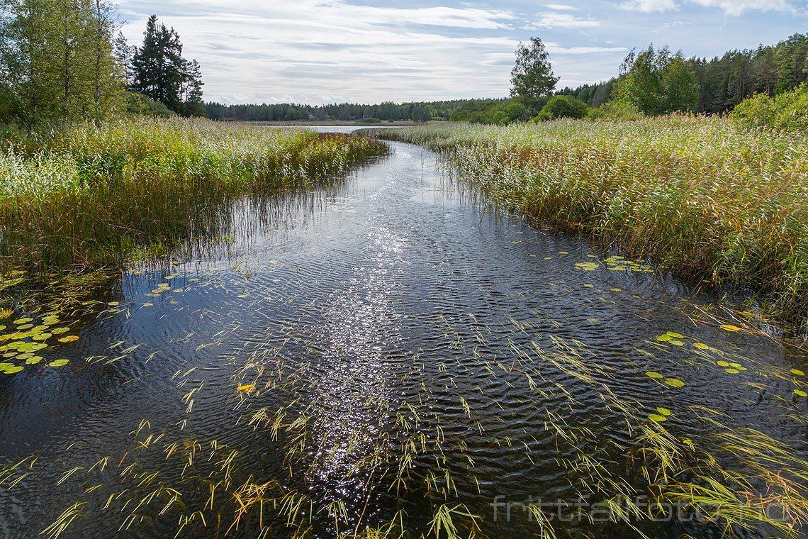 Ved Svalahella nær Kjærnes, Våler, Viken.<br>Bildenr 20180913-174.