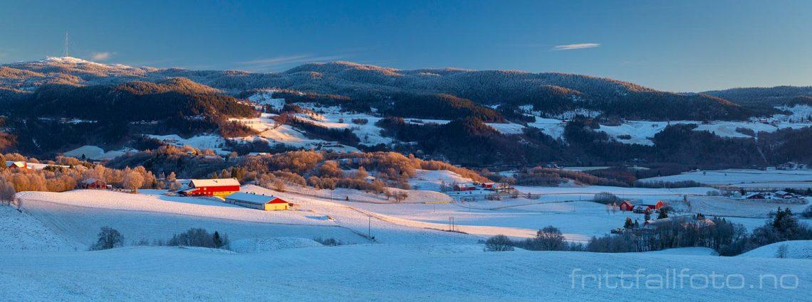 Vinterlys ved Kvål i Gauldalen, Melhus, Trøndelag.<br>Bildenr 20181127-202-211.