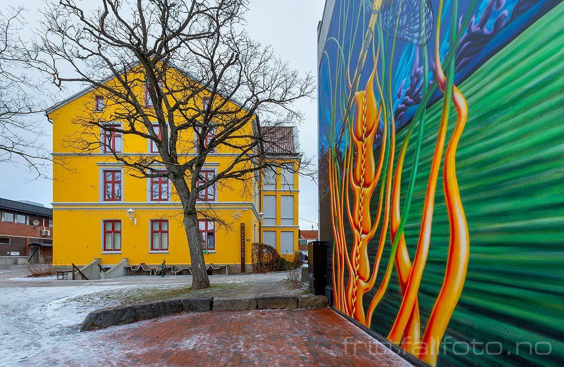 Gatekunst i Rakkestad, Rakkestad, Viken.<br>Bildenr 20190112-152.