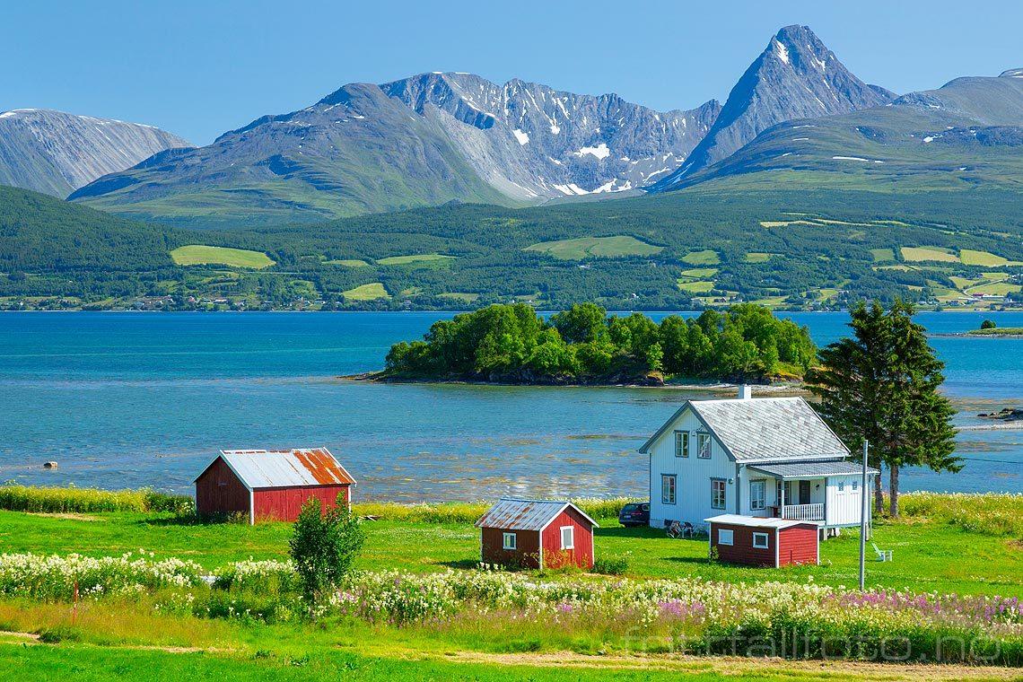 Sommerdag ved Balsfjorden med Lyngsalpan i bakgrunnen, Balsfjord, Troms og Finnmark.<br>Bildenr 20190728-101.