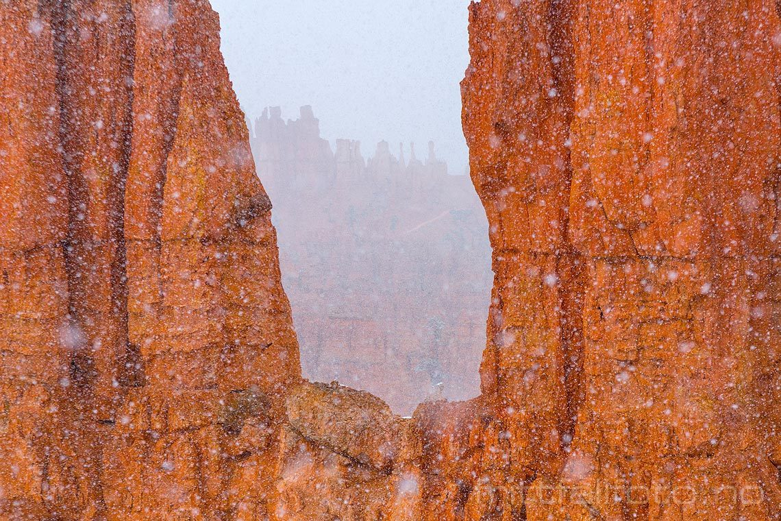 Snøen laver ned i Bryce Canyon, Garfield County, Utah, USA.<br>Bildenr 20170403-094.