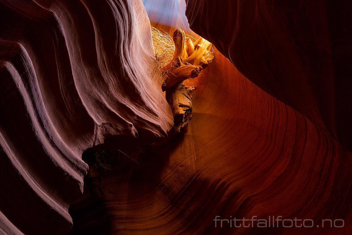 Fjellformasjoner i Upper Antelope Canyon nær Page, Coconino County, Arizona, USA.<br>Bildenr 20170405-497.