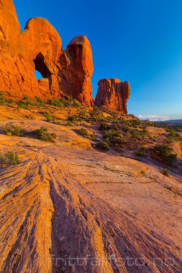 Kveld ved Cove Of Caves i Arches National Park nær Moab, Grand County, Utah, USA.<br>Bildenr 20170408-684.