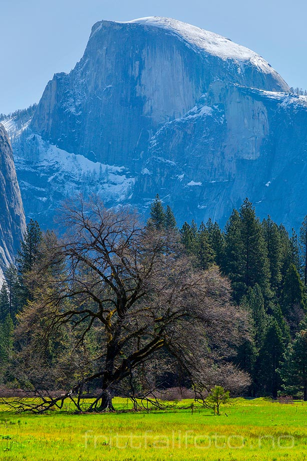 Half Dome ruver over Yosemite Valley, Sierra Nevada, Mariposa County, California, USA.<br>Bildenr 20170414-465.
